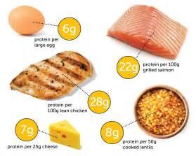 diet 60 carbs 20 protien fat picture 7