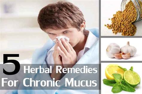 ayurvedic solution to excessive mucus picture 5