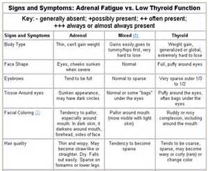 adrenal fatigue and low thyroid function picture 1