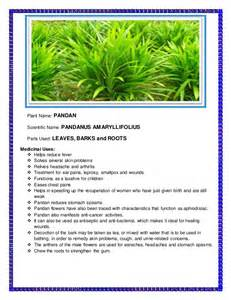 herbal plants and scientific names picture 15