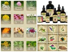 amish female herbal formula picture 10