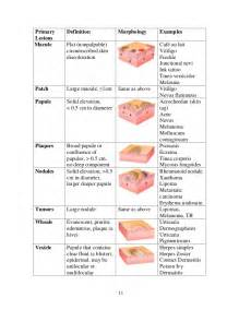 meaning of skin lesions picture 2