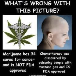 weed cancer picture 2