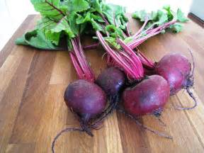 beet root picture 1