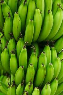 banana starch picture 14