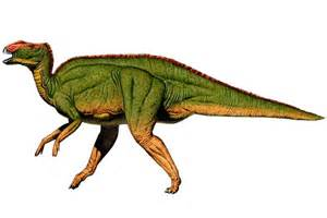 dinosaur h picture 9