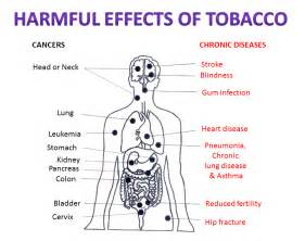 how to cleanse the body of smokeless tobacco picture 7