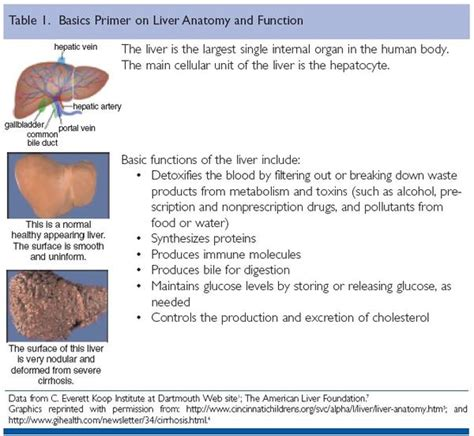 liver transplant life expectancy picture 3
