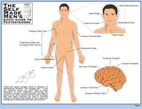 feminization hormones effects on men picture 1