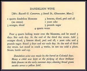 dandelion wine recipe picture 1