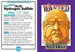 reducing hydrogen sulfide in gi tract picture 7