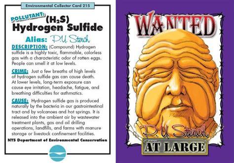 gastrointestinal hydrogen sulfide el picture 5