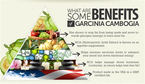 cheapest garcinia cambogia benefits picture 15
