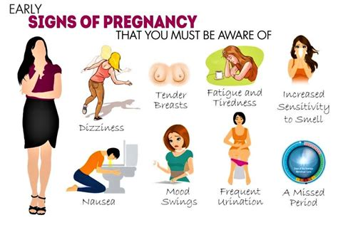 increased libido and early pregnancy picture 2