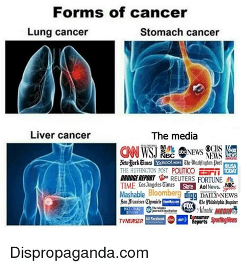 lung and liver cancer picture 3