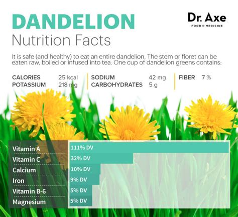 dandelion to cleanse the liver picture 14