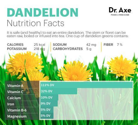 fatty liver and dandelion picture 14