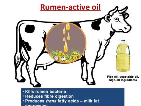 5 factor diet picture 11
