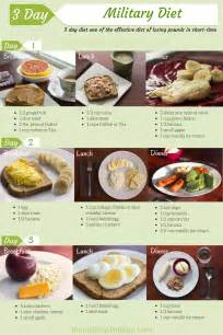 what to eat on 3 hour diet picture 11
