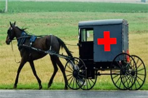 amish natural supplements picture 2