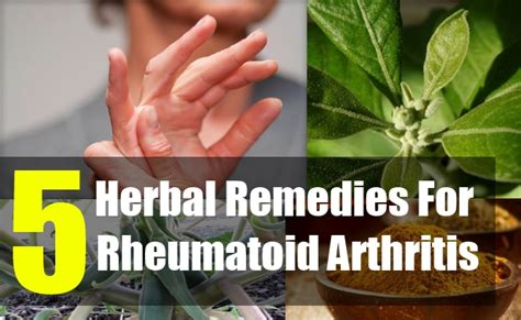 herbal remedies for arthritis picture 2