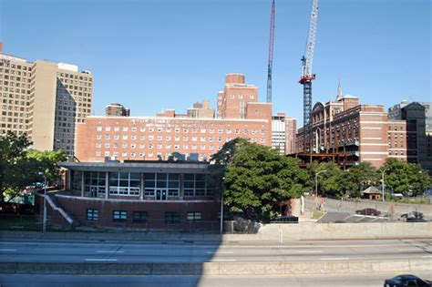 brookdale center for aging hunter college picture 14