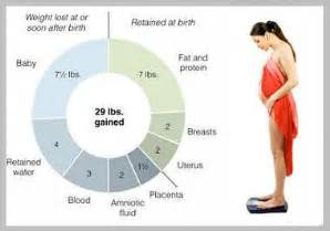 how much weight do i gain in pregnancy picture 5