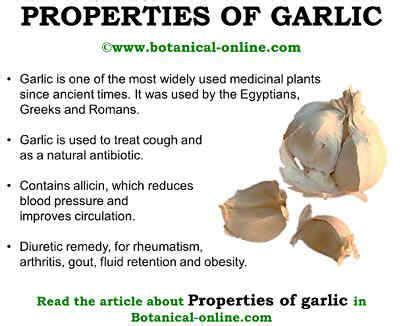 garlic for skin cancer picture 5