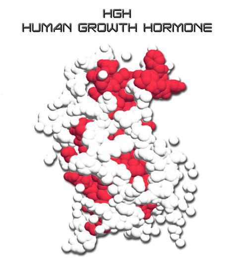 hgh human growth hormones side effects picture 8