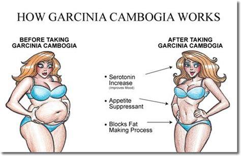 can you break in half garcina cambogia pills picture 5