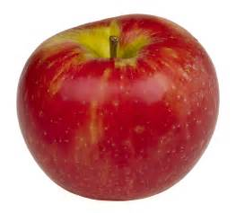 herbal appe e stimulants picture 10