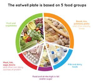 eating the right food groups for weight loss picture 4