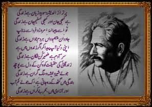 urdu point picture 1