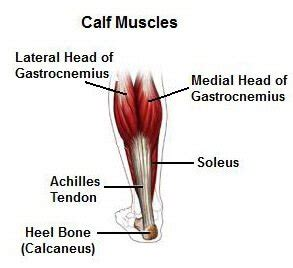 calf muscle strain with popping noise picture 2