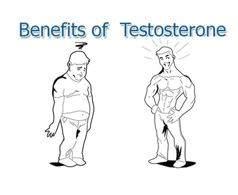 testosterone booster for puberty picture 2
