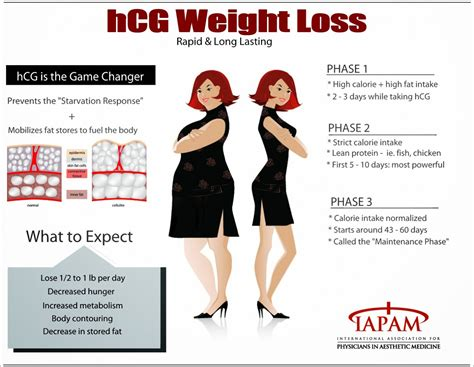 rapid weight loss diets picture 13