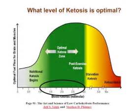 atkins diet and ketone level picture 1