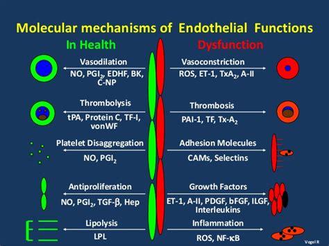 erectile disfunction renal failure picture 3