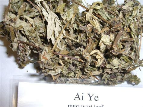 herbs that stop menstrual bleeding picture 5