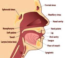how do you treat greatly enlarged thyroid picture 7