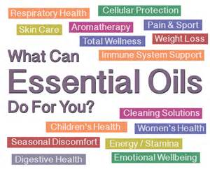 essential solutions the herbal health company picture 6