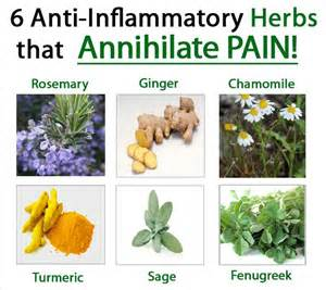 Herbal anti inflammatory picture 1