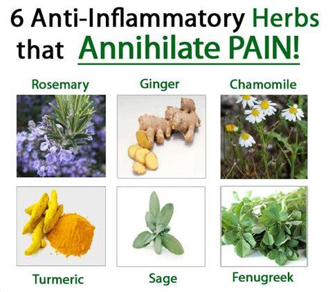 herbal anti inflammatory picture 1