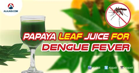 does papaya leaves helps for joint pains picture 4