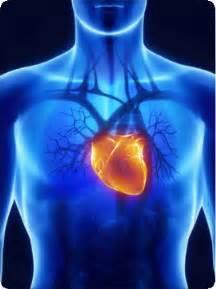 congestive heart failure diet picture 13