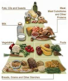 diabetic weight loss meal supplemts picture 6