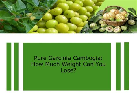 can garcinia cambogia help lose weight with hypothyroid picture 6