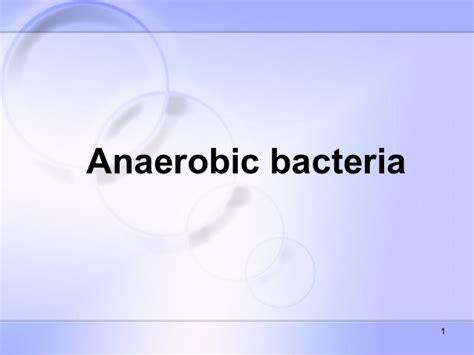 anaerobic picture 6