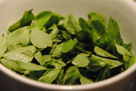 fenugreek fresh leaves in copenhagen shops picture 10
