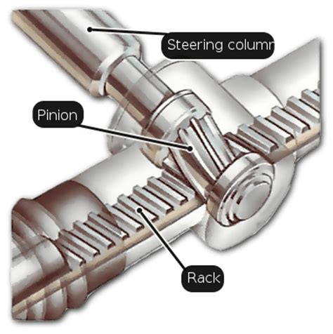 function of joints picture 15